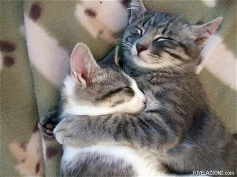 abbraccio a letto abbracci