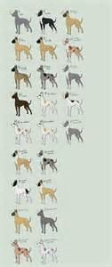 colors of great danes great dane adopts 1 open by nekonotaishou on deviantart