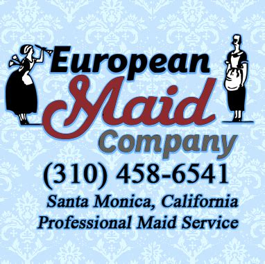 the european company cleaner cleaning services