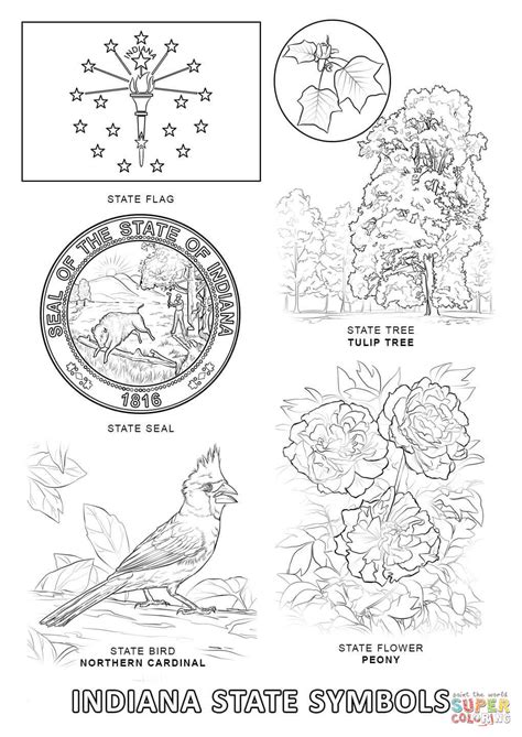 indiana coloring page indiana state symbols coloring page free printable