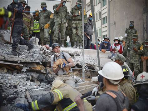 Search For In Mexico 230 Dead In Mexico Quake As Rescuers Desperately Search For Survivors Abc News