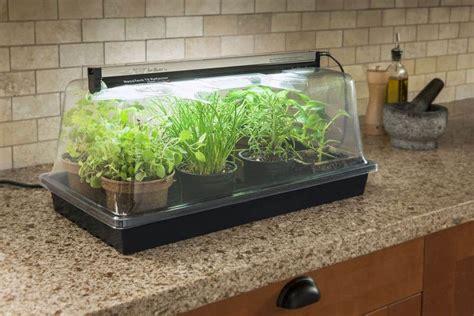 grow lights indoor greenhouses family food garden