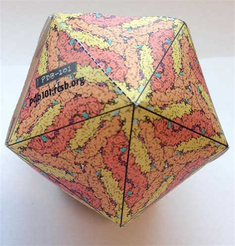 Virus Origami - rcsb pdb newsletter outreach education