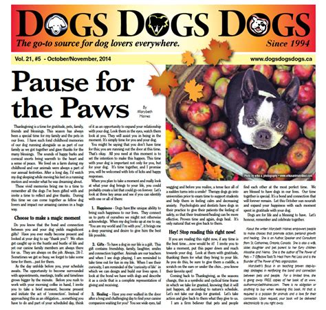 articles on dogs media the power of pets