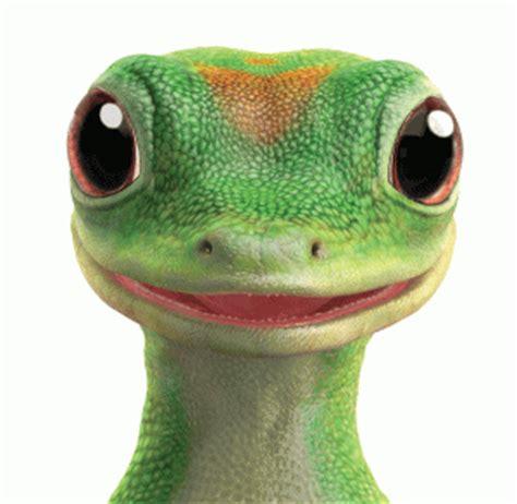 geico insurance gecko geico lizard quotes quotesgram