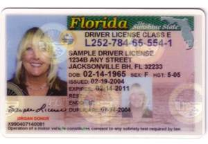 Florida Drivers License Template by Photo 4 Ids Photo Gallery