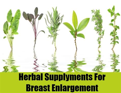 male breast enlargement must grow bust saw palmetto male breasts enlargement