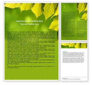 policy brief exle template word templates free e commercewordpress