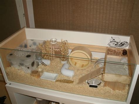 diy hamster cage diy cages with page 4 supplies