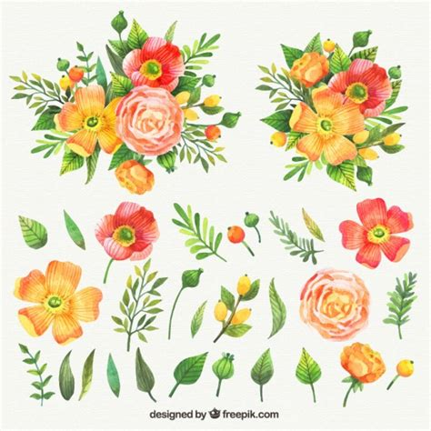 free vector watercolor flowers watercolor collection of nice flowers vector free download