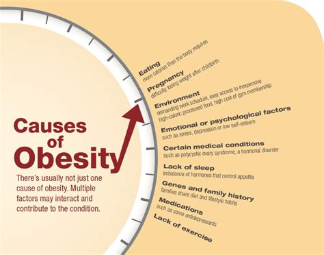Essay About Obesity In America by Essay About Obesity In America