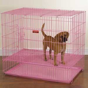 pink crate pink puppy crate small