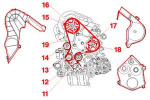 Peugeot 206 Cambelt Change Interval 11 Crankshaft Gear