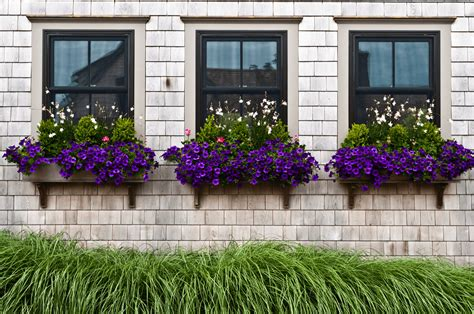 contemporary window boxes modern window treatment ideas freshome
