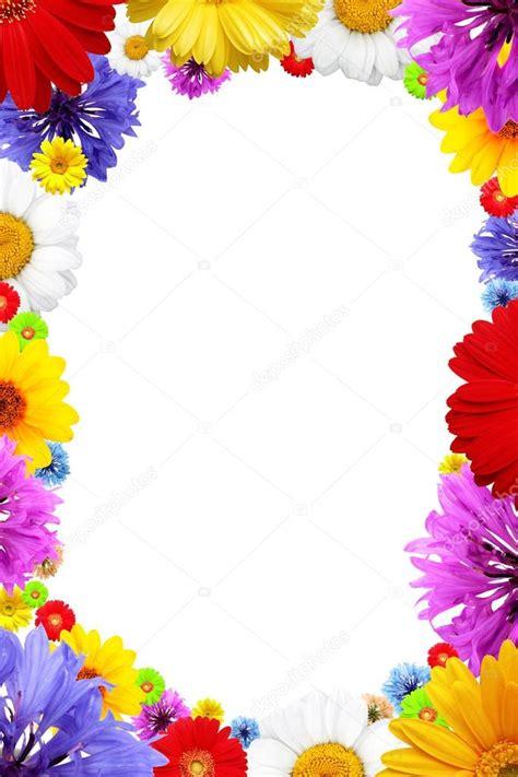 stock cornici cornice di fiori estivi colorati foto stock 169 rozaliya