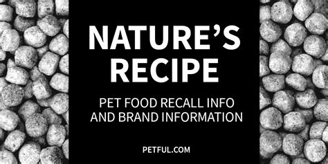 nature s recipe puppy food review natures recipe food recall 2017 dandk