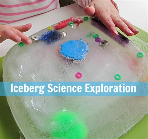 fun science project for young kids iceberg science experiment for kids activities for kids