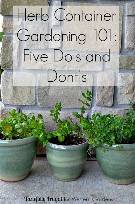 indoor herb garden uv light the 25 best herbs garden ideas on herb garden