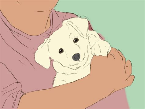 how to an 8 week puppy how to care for an 8 week puppy with pictures wikihow