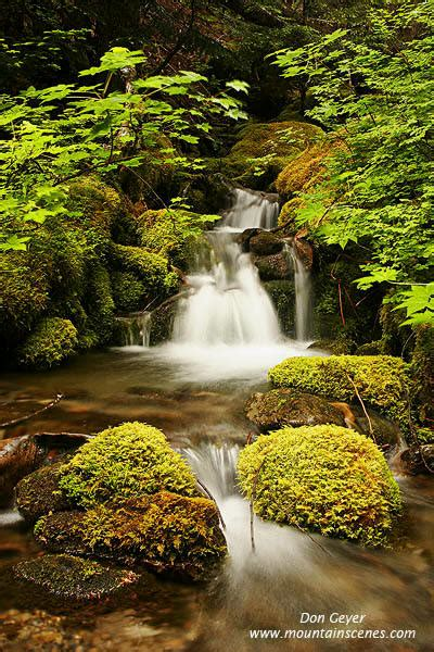 Cache Creek Gift Card - cache creek in olympic national park dosewalips prints photos photography l don geyer