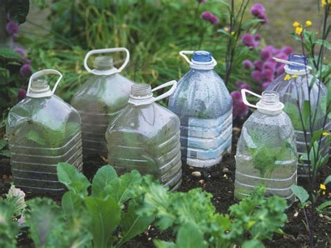plastic container gardening page not found error hgtv