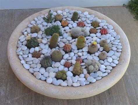 Mini Cactus diy a mini cactus garden cacti mini cactus garden and mini cactus