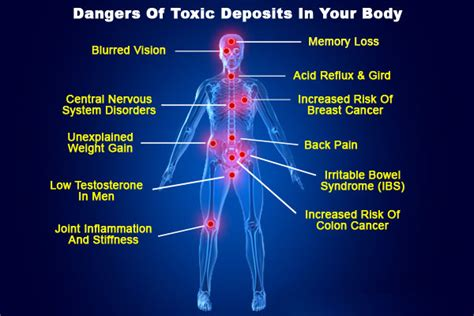 Effects On Detox by Declaration August Why Should Be Detox Our Live