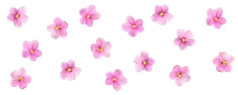 Floral Design by Diy Floral Votives Design Sponge