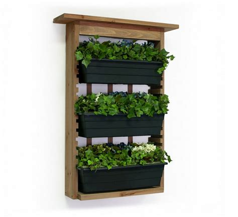 wall mounted succulent planter interesting ideas for home