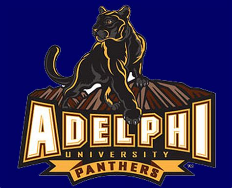 Adelphi Mba Admission Requirements by College Adelphi College