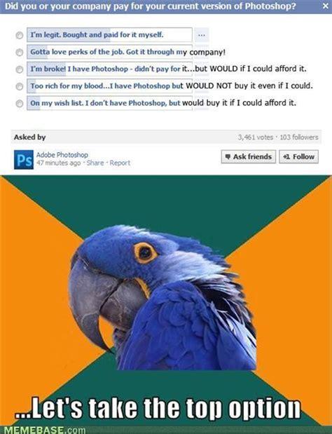 Paranoid Parrot Meme - memes paranoid parrot image memes at relatably com