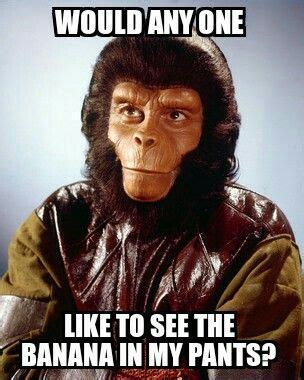 Planet Of The Apes Meme - 12 best my memes images on pinterest memes meme and