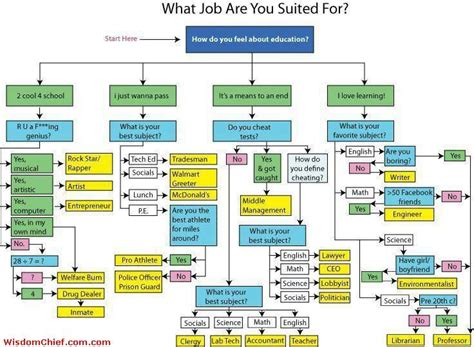 film career quiz for what job are you suited for flow chart quiz lol