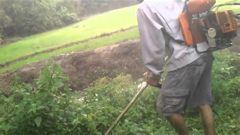 Mesin Potong Rumput Tali Senar mesin rumput doovi