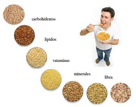 que aportan los alimentos que nos aportan los cereales