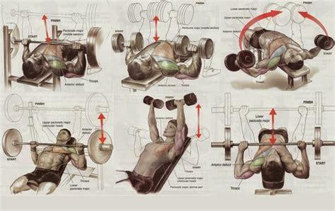 big bench program best chest workout routine project next