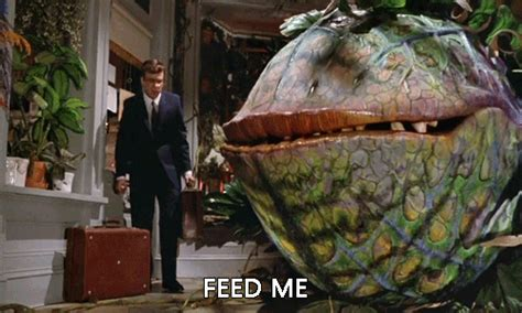 Feed Me Seymour Meme - hungry feed me gif find share on giphy