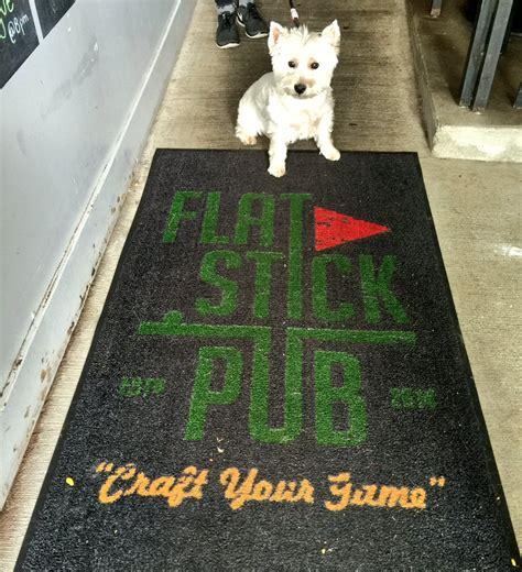 friendly bars seattle woof republic pet lifestyle experts happy national day celebrate with