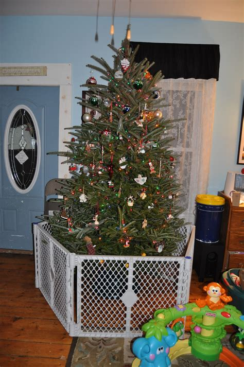 100 when should you get a christmas tree how to