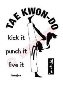 Tshirt Taekwondo Kick Logo Baam 264 best images about martial arts taekwondo on