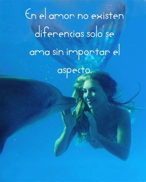 imagenes de amor animadas de delfines gifs y glitters im 193 genes de delfines con frases de amor