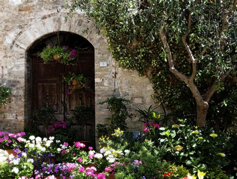 Italian Front Door Adorned With Flowers Photograph By Flowers For Front Door