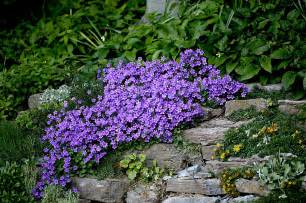 create a faux rock garden on a hillside or berm wisconsin gardening web articles