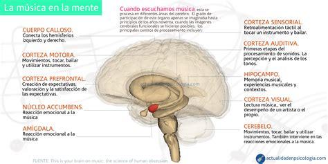 la idea de la 8425428378 8 maneras sorprendentes como la m 250 sica beneficia y afecta nuestro cerebro