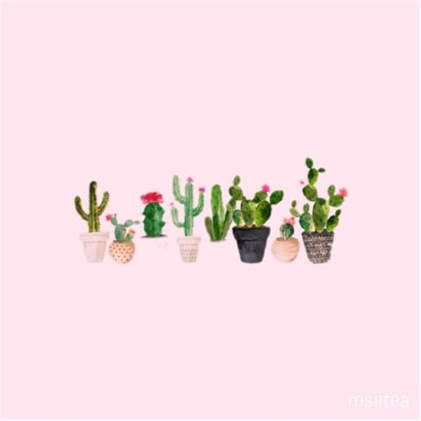 Letter S Home Decor by Cactus