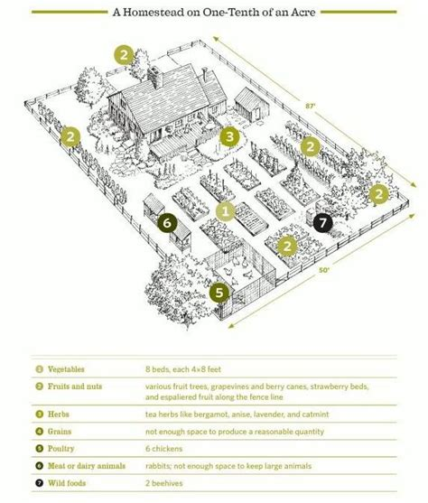 9 for planning the homestead layout hippies small scale homestead for the yard homesteading backyard garden planning