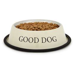 Dachshund Home Decor Proselect Good Dog Bowl Ivory Baxterboo
