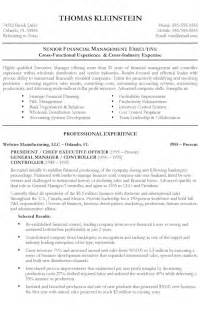 chief executive officer resume exle ceo resume template word resume sles pinterest