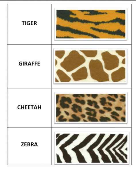 animal pattern words zoo animal prints matching words and word cards for