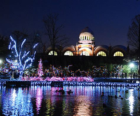 Pnc Festival Of Lights The Cincinnati Zoo Botanical Garden Festival Of Lights Zoo